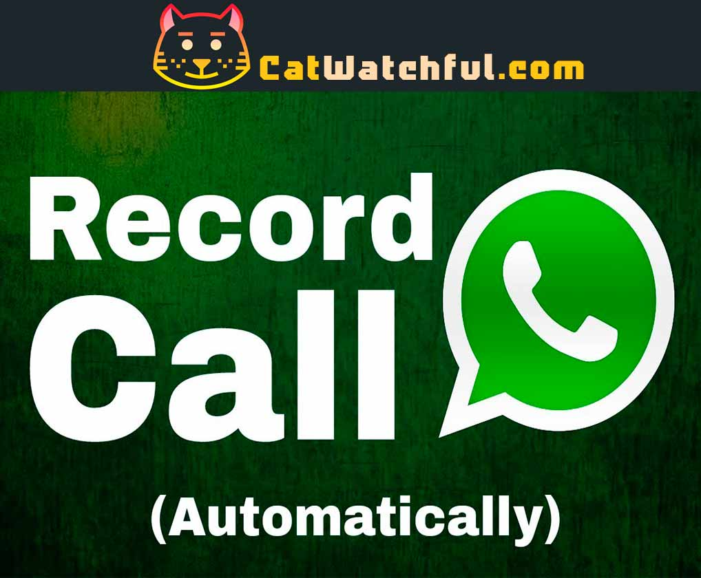Whatsapp call rec